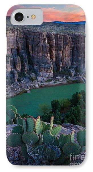 Twilight Cactus IPhone Case by Inge Johnsson