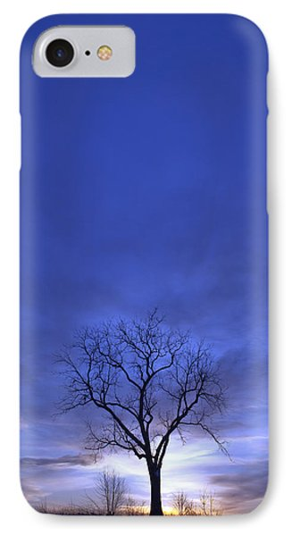 Twilight Tree IPhone Case by John Stephens
