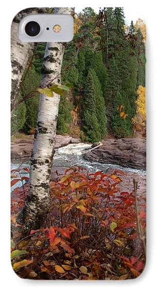 Twin Aspens IPhone Case by James Peterson