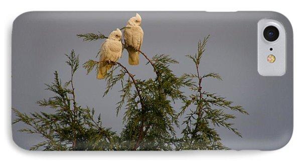 Twin Cockatoos IPhone Case by Bev Conover