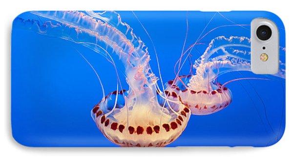Twin Dancers - Large Colorful Jellyfish Atlantic Sea Nettle Chrysaora Quinquecirrha  Phone Case by Jamie Pham