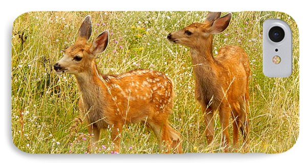 Twin Fawns IPhone Case by Dan Miller