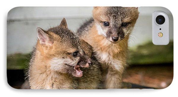 Twin Fox Kits Phone Case by Paul Freidlund