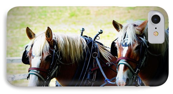 IPhone Case featuring the photograph Twin Horses by Cathy Shiflett
