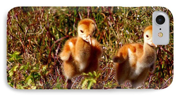 IPhone Case featuring the photograph Twin Sandhill Chicks by Chris Mercer