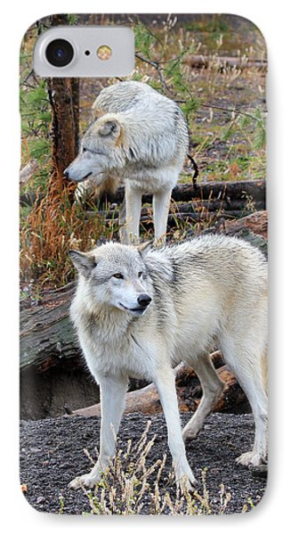 Twin Wolves IPhone Case by Athena Mckinzie
