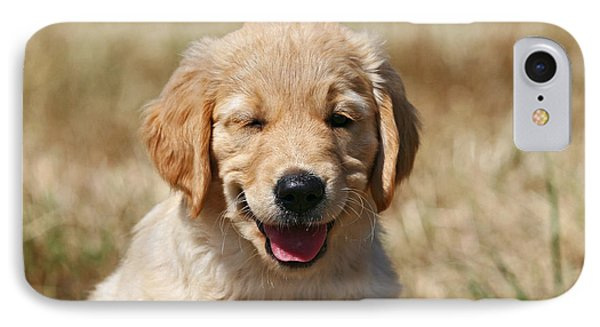 Twinkling Golden Retriever Puppy IPhone Case by Dog Photos