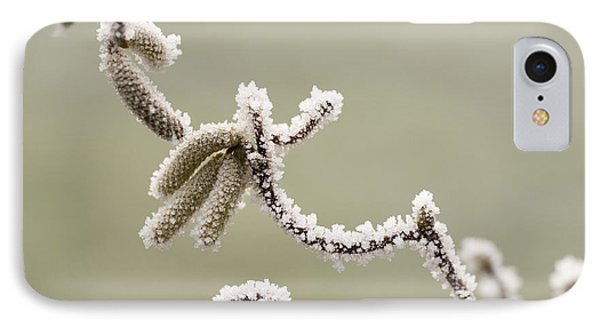 Twisted Frost Phone Case by Anne Gilbert