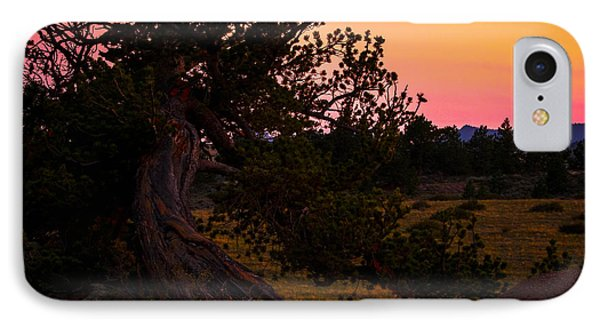 Twisted Tree In Sunset IPhone Case