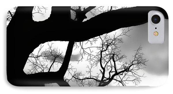 Twisty Tree Silhouette IPhone Case by Ellen Tully