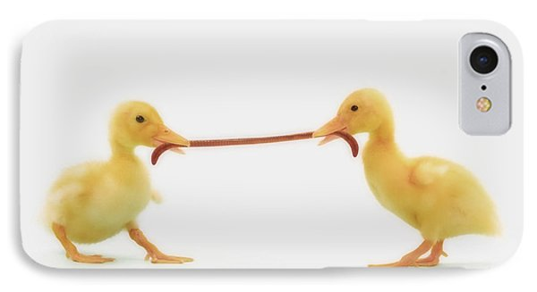 Two Baby Ducklings Fighting IPhone Case by Thomas Kitchin & Victoria Hurst