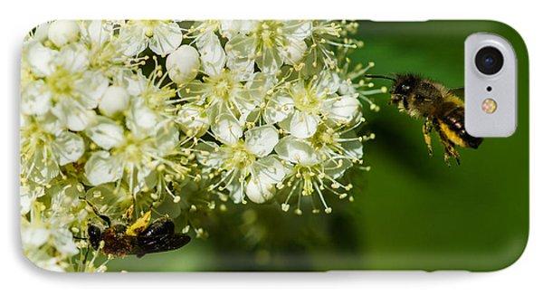 Two Bees On A Rowan Truss - Featured 3 Phone Case by Alexander Senin