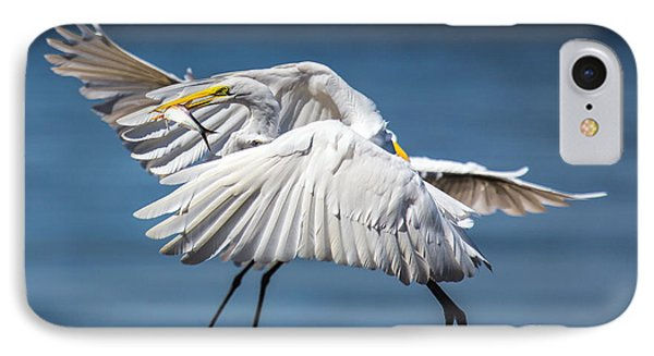IPhone Case featuring the photograph Two Birds And One Fish by Susi Stroud