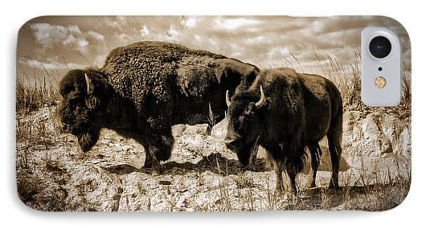 Two Buffalo IPhone Case