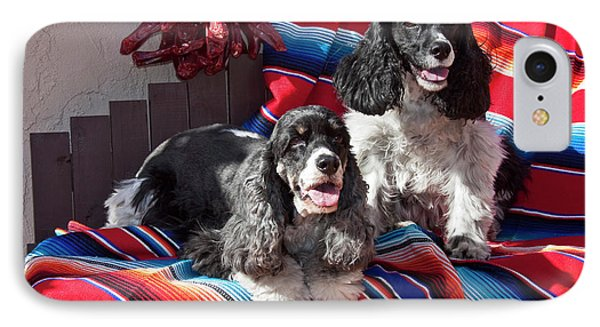 Two Cocker Spaniels Together IPhone Case by Zandria Muench Beraldo