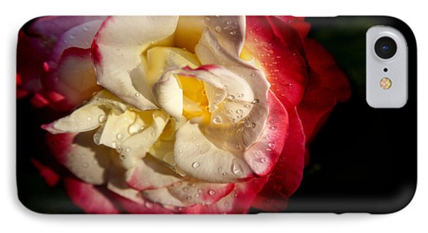 Two Color Rose IPhone Case by David Millenheft