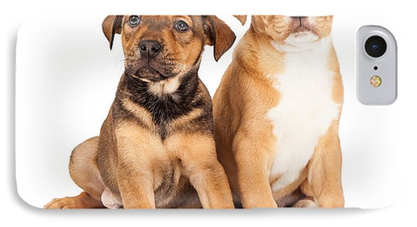 Two Cute Crossbreed Puppies IPhone Case by Susan Schmitz