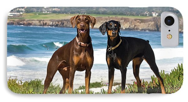 Two Doberman Pinschers At Carmel Beach IPhone Case by Zandria Muench Beraldo