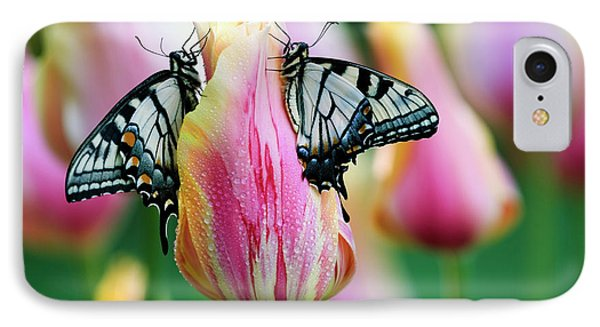 Two Eastern Tiger Swallowtail IPhone Case