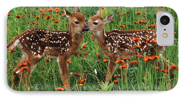 IPhone Case featuring the photograph Two Fawns Talking by Chris Scroggins