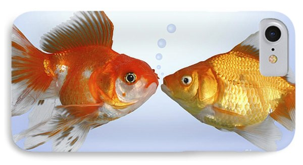 Two Fish Kissing Fs502 IPhone Case by Greg Cuddiford