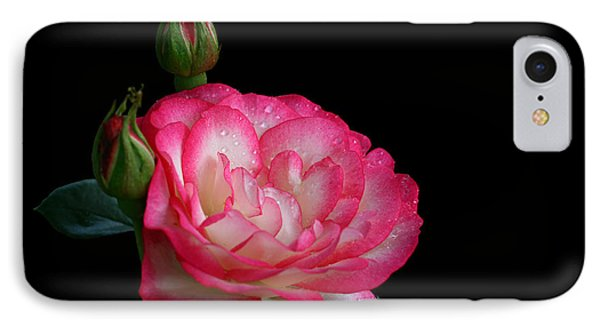 IPhone Case featuring the photograph Buddies by Doug Norkum