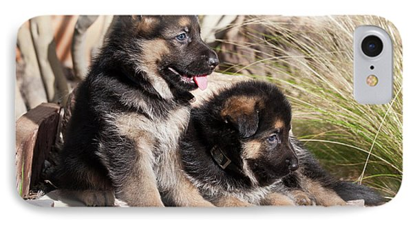 Two German Shepherd Puppies On A Rock IPhone Case by Zandria Muench Beraldo