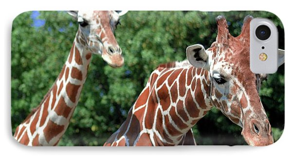 Two Giraffes Phone Case by Kathleen Struckle