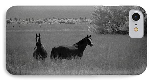 Two Horses IPhone Case by Bradley R Youngberg
