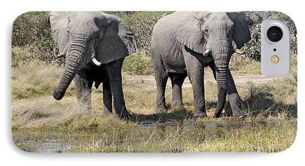 IPhone Case featuring the photograph Two Male Elephants Okavango Delta by Liz Leyden