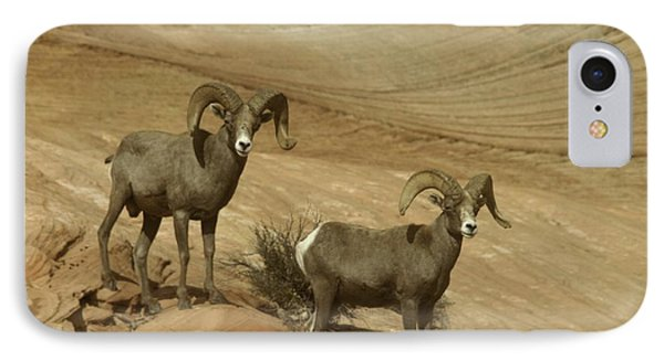 Two Male Rams At Zion Phone Case by Jeff Swan