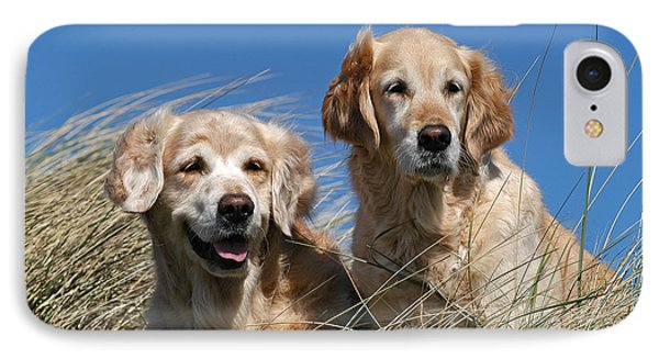 Two Old Golden Retriever Dogs In Dunes IPhone Case by Dog Photos