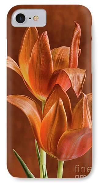 Two Orange Red Tulips Entwined IPhone Case by Linda Matlow