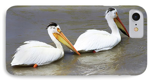 IPhone Case featuring the photograph Two Pelicans by Alyce Taylor