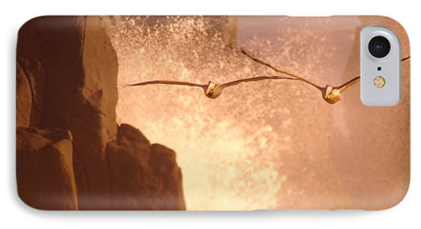 Two Pelicans Combing The Rocks IPhone Case by Jeff Swan