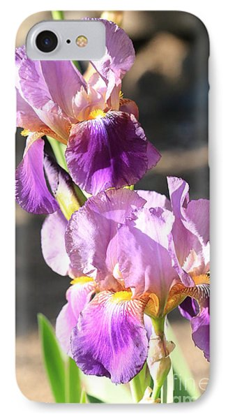 Two Purple Irises IPhone Case by Carol Groenen