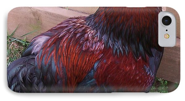 Two Roosters IPhone Case by Eric  Schiabor