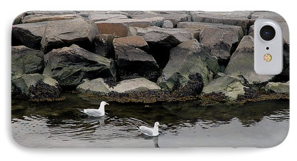 IPhone Case featuring the photograph Two Seagulls by Dorin Adrian Berbier