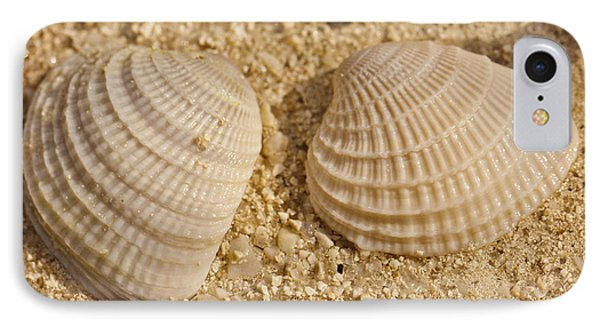 Two Shells IPhone Case