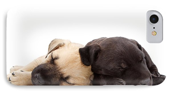 Two Sleeping Puppies Laying Together  IPhone Case