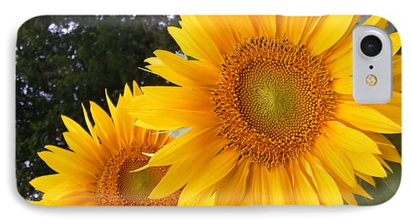 Two Sunflowers IPhone Case