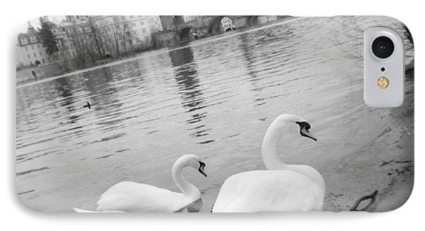 Two Swans In A River, Vltava River IPhone Case by Panoramic Images