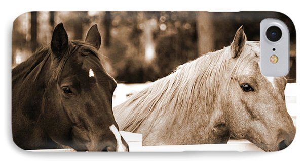 Two Sweet Horses IPhone Case