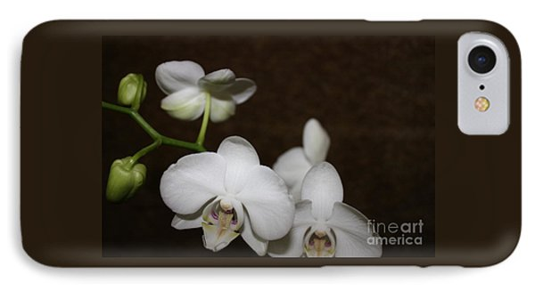 Two To Bloom IPhone Case by Cathy Dee Janes