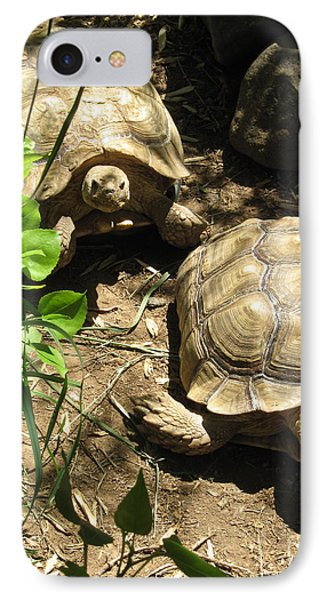 Two Tortoises IPhone Case by CML Brown