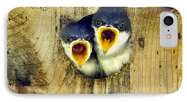 Two Tree Swallow Chicks Phone Case by Christina Rollo