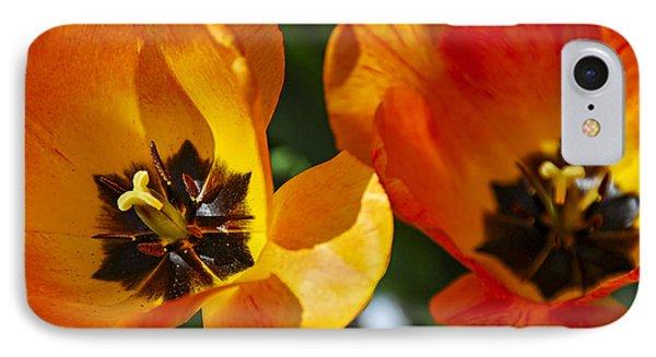 Two Tulips Phone Case by Elena Elisseeva