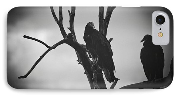 IPhone Case featuring the photograph Two Vultures by Bradley R Youngberg