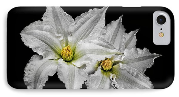 Two White Clematis Flowers On Black IPhone Case by Jane McIlroy