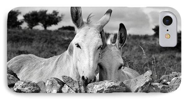 Two White Irish Donkeys IPhone Case
